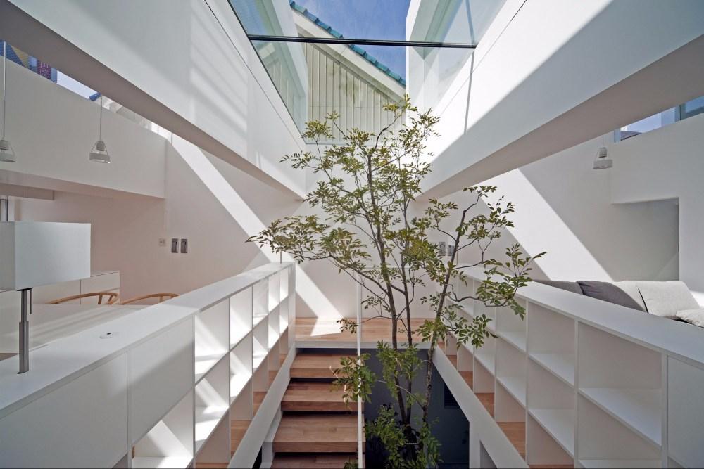Pohon Rumah Jepang