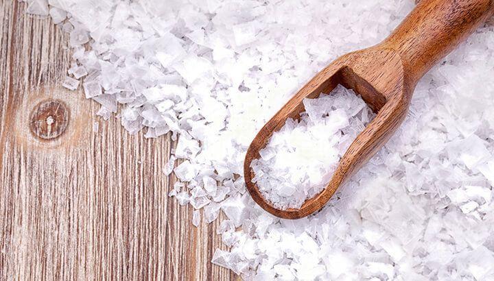 cara membasmi rayap dengan garam
