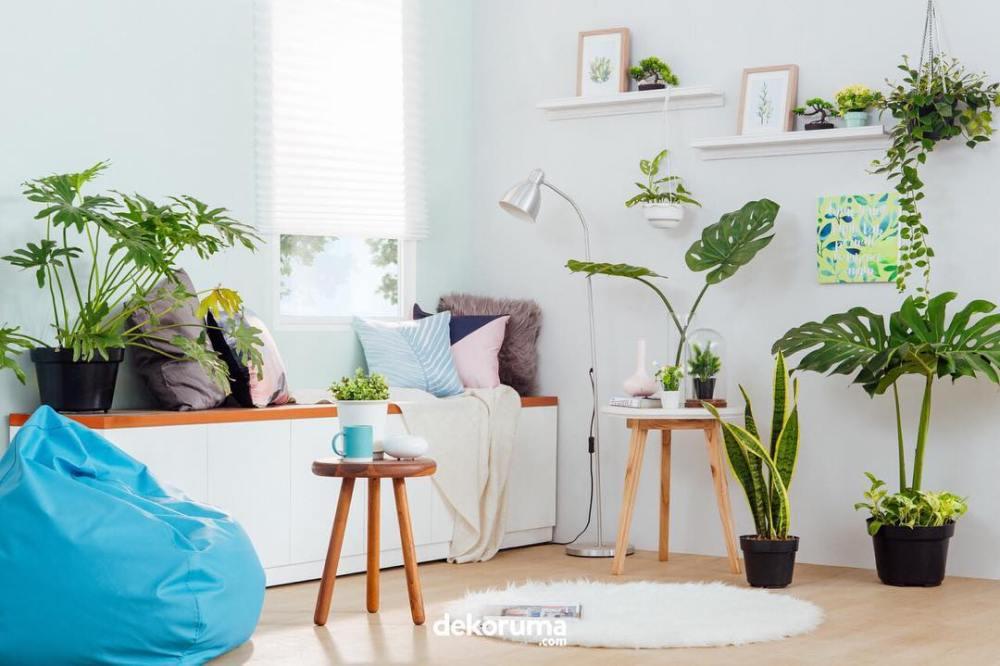 Dekorasi Rumah Minimalis Bantal Duduk