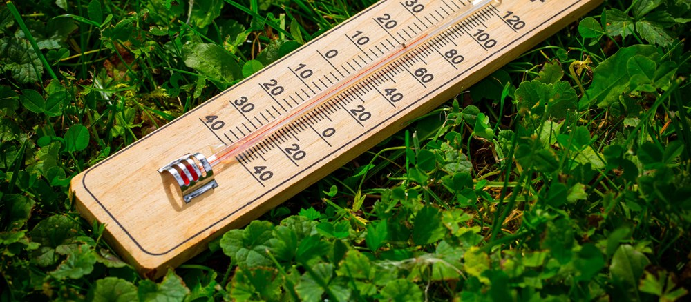 Merawat Tanaman Kontrol Suhu