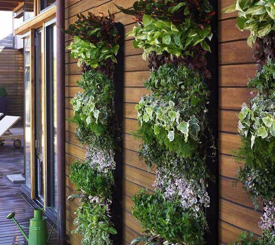 Kebun Sayur Rak Outdoor