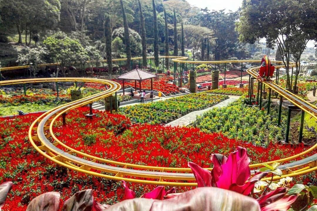 Desain Taman Wisata Bunga
