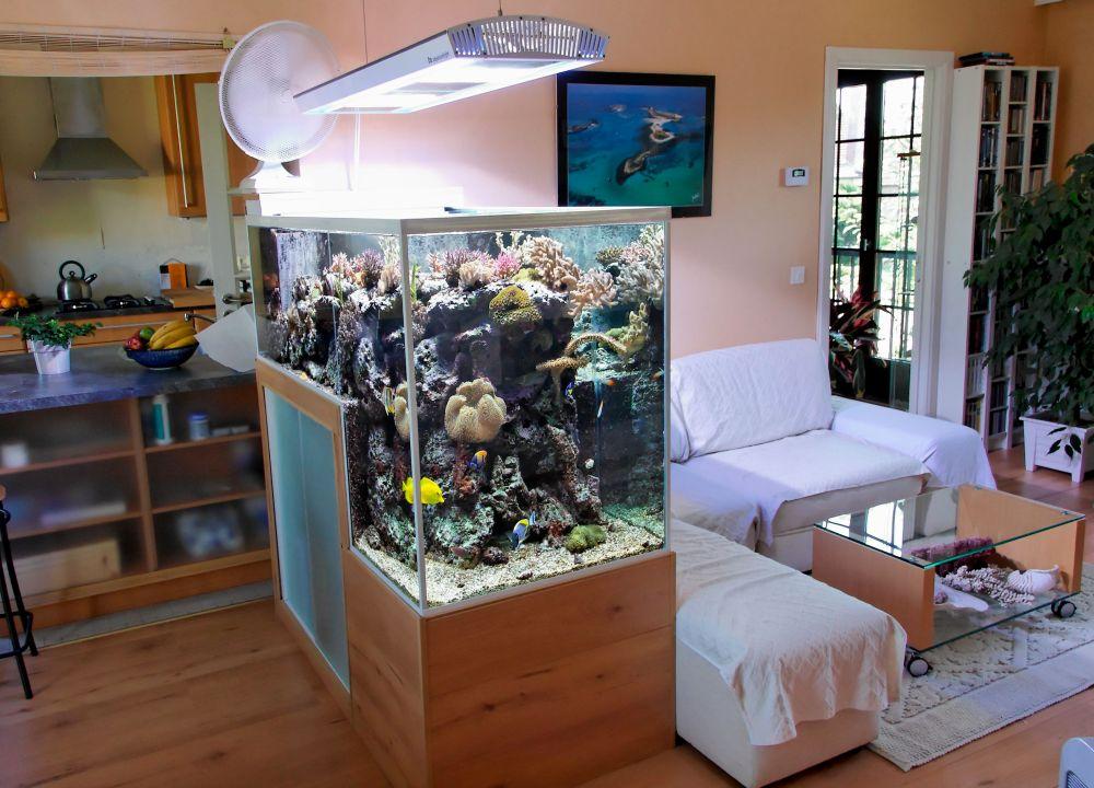 ruang santai akuarium