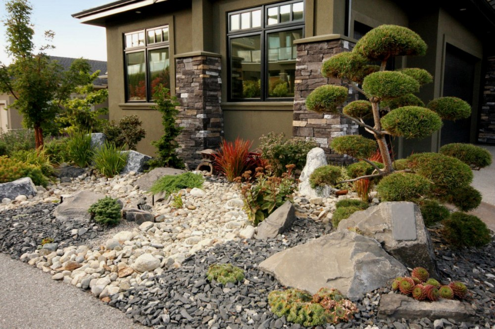 well-suited-ideas-desert-landscape-for-front-yard-garden-landscaping