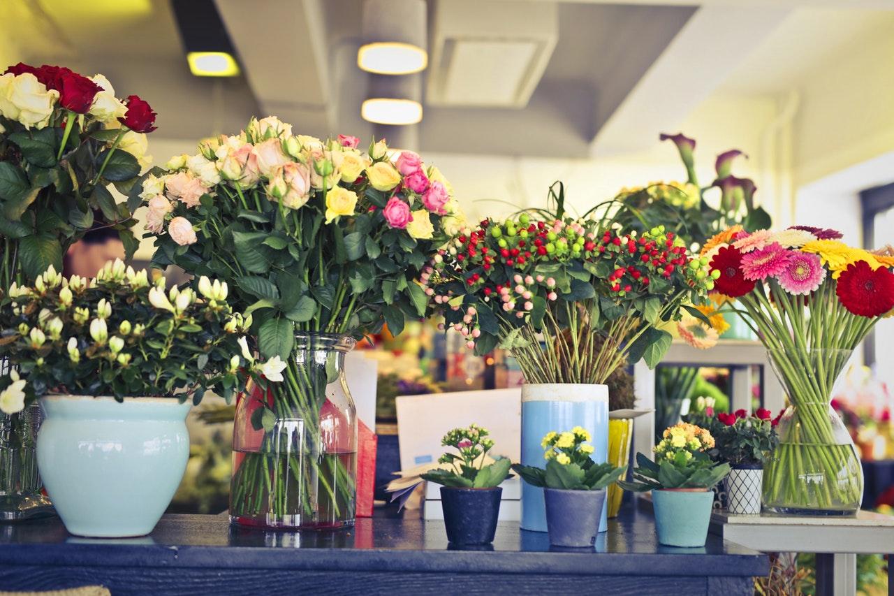 6 Kreasi Pot Bunga Minimalis Imut Buat Si Penyuka Tanaman