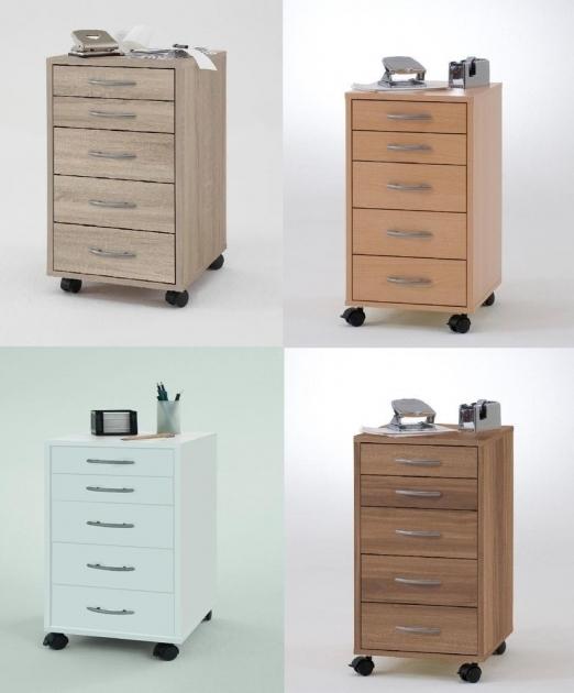 12 Inch Deep Storage Cabinet