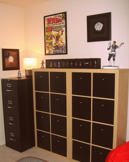 Comic Book Storage Cabinets  Storage Designs