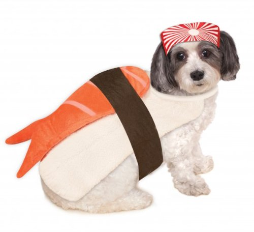 20 Cute Dog Halloween Costumes Food Inspired Costume