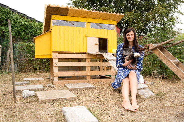 Free Chicken Coop Plan DIY