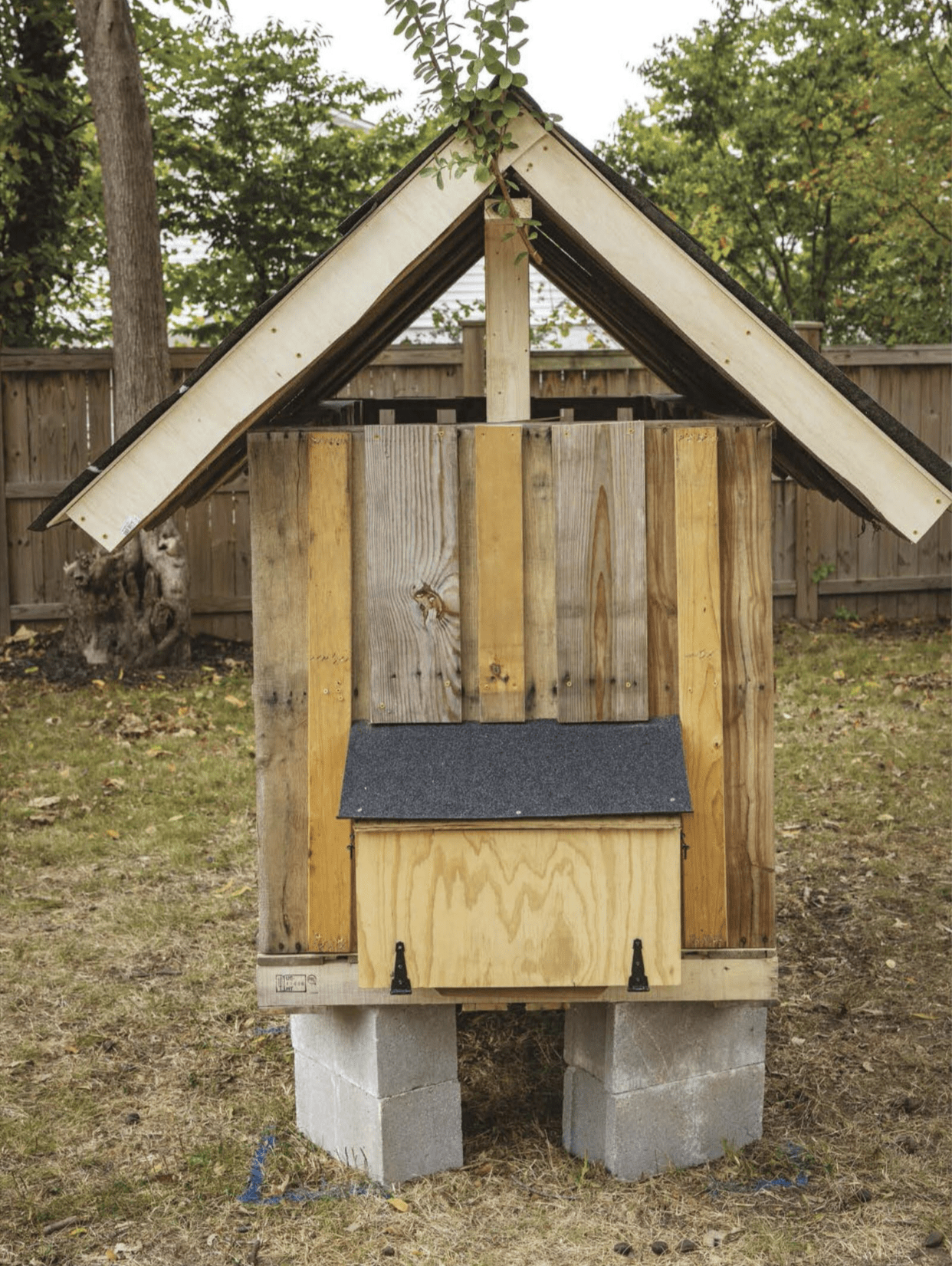 DIY Plan to Build a Pallet Chicken Coop