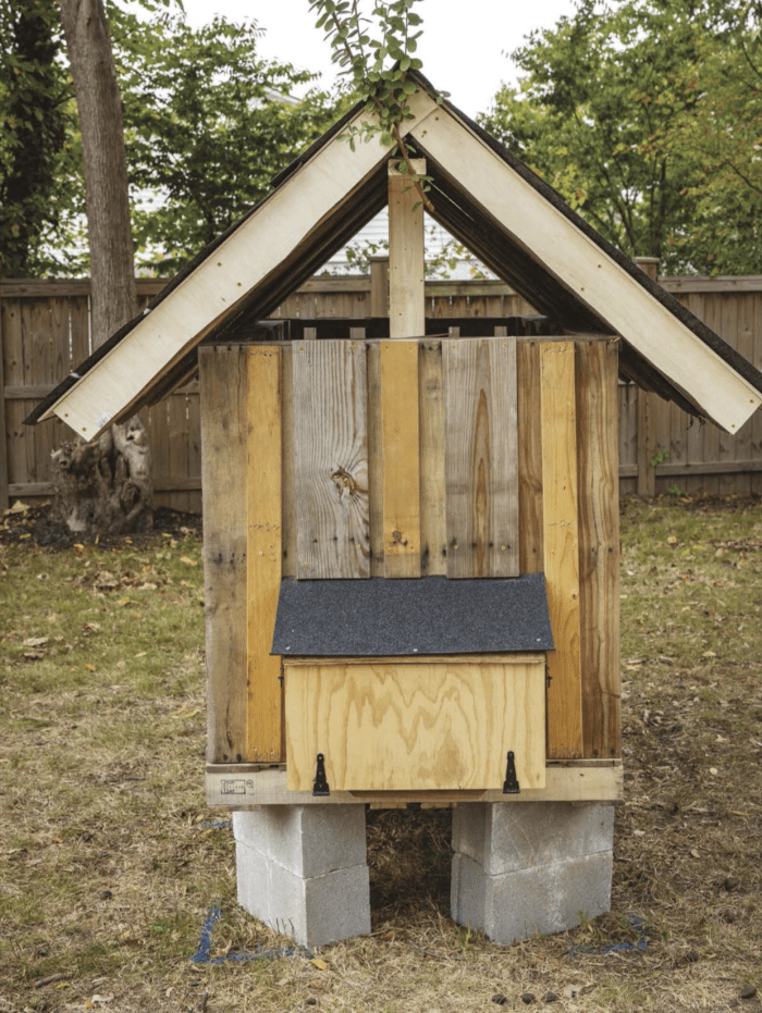 diy-chicken-coop