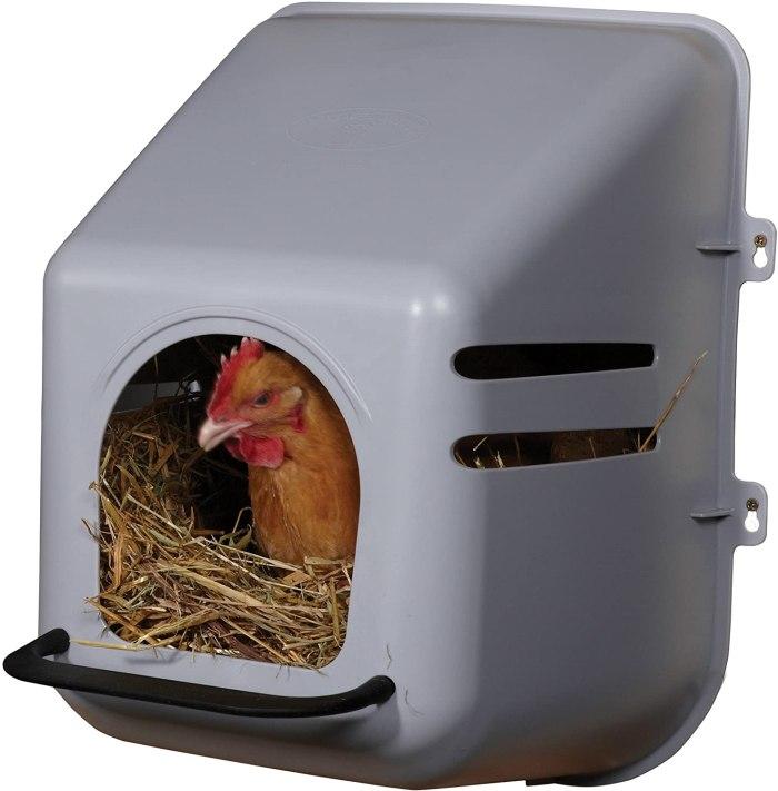 little giant single plastic chicken nesting box