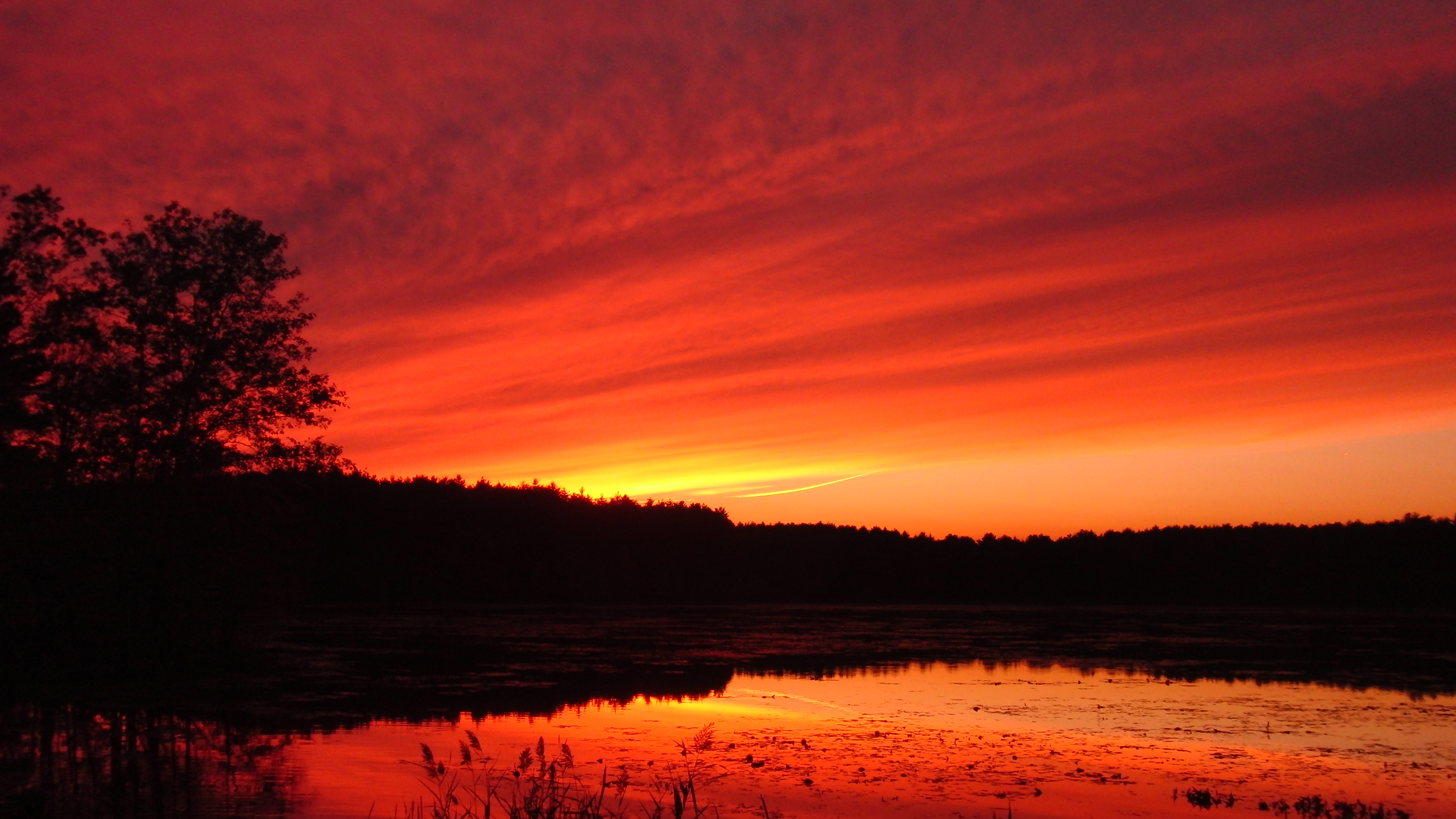 4k Fall Michigan Wallpaper Sunset Wildlife Photos Delaney Wma