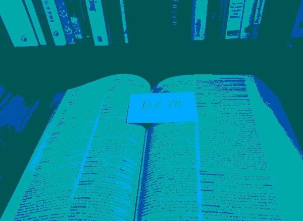 woordenboek2