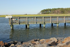 masseys landing, sussex county, state boat ramp, delaware, masseys ditch, fishing pier, craoker, bluefish, flounder, tautog, striped bass, spot, mummichug, bald eagle, raccoon thicket island, ,rock wall, long neck, pot nets, rehoboth shores, white house beach, malones, new rv park ,