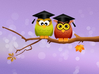Cartoon of two owls with graduation caps