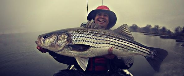 Maryland dnr new proposal for hooks bait striped bass for Md dnr fishing license