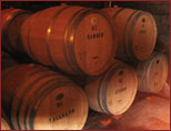 Beautiful oak barrels where our wine is aged before bottling