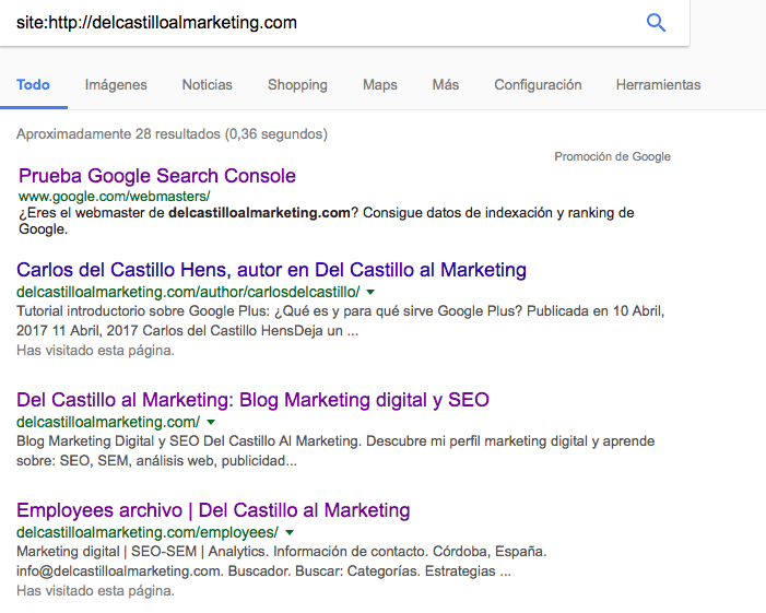Páginas indexadas por Google de la web Del Castillo al Marketing