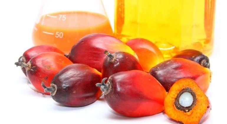 DEL CINE AL HOSPITAL Aceite de palma: Lista de productos CON y su equivalente SIN.