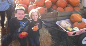 Delaware County Area Weekend Events & Family Fun 10/10 – 10/12