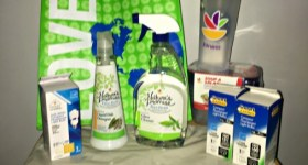 Go Green While You Spring Clean with these Natural, Organic and Smarter Products from GIANT {& a Giveaway}