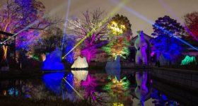 Experience The Philadelphia Zoo in a Whole New Light at This Season's Magical LuminNature Light and Music Experience