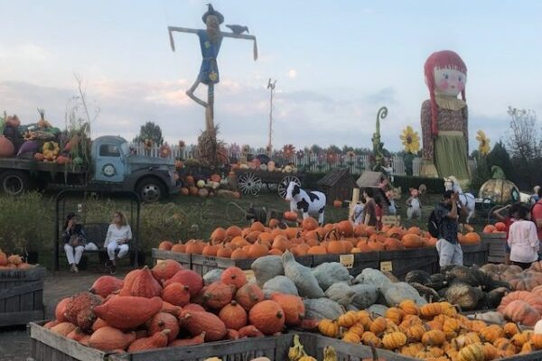6 Fun Things to Do in Delaware County PA and Surrounding Areas this Weekend 9/18 – 9/20