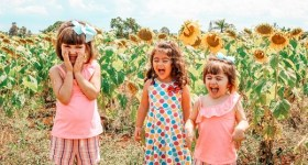 Fun Things to Do in Delaware County PA and Surrounding Areas this Weekend 8/27 – 8/29