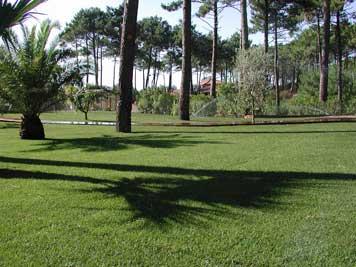 Jardinier paysagiste, aménagement d'espaces verts