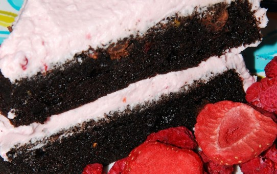 mixed berry chocolate cake sugar free no gluten vegan alterantively sweetened