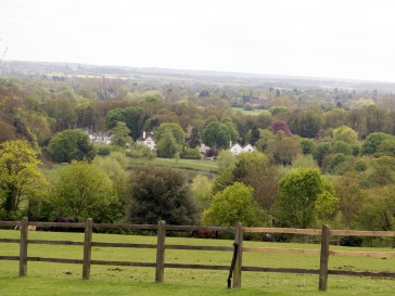 View from Taplow2