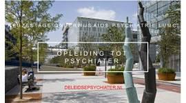 Keuzestage onderwijs voor aios psychiatrie