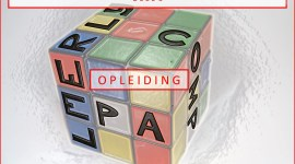 Het nieuwe opleidingsplan 'De Psychiater' in het LUMC -Deel 3-  EPA's, Leerlijnen en Competenties