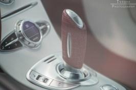 xzibit-bringing-a-bugatti-veyron-to-gumball-3000-2014_1