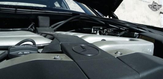 DLEDMV 2K18 - Mercedes S600 VDR84 - 33