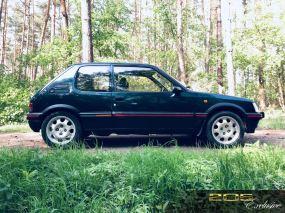 DLEDMV 2K19 - Peugeot 205 GTI Monte Carlo - 014