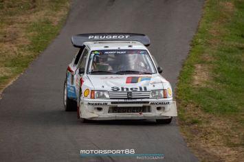 DLEDMV 2K19 - Eifel Rallye Festival 2019 -016