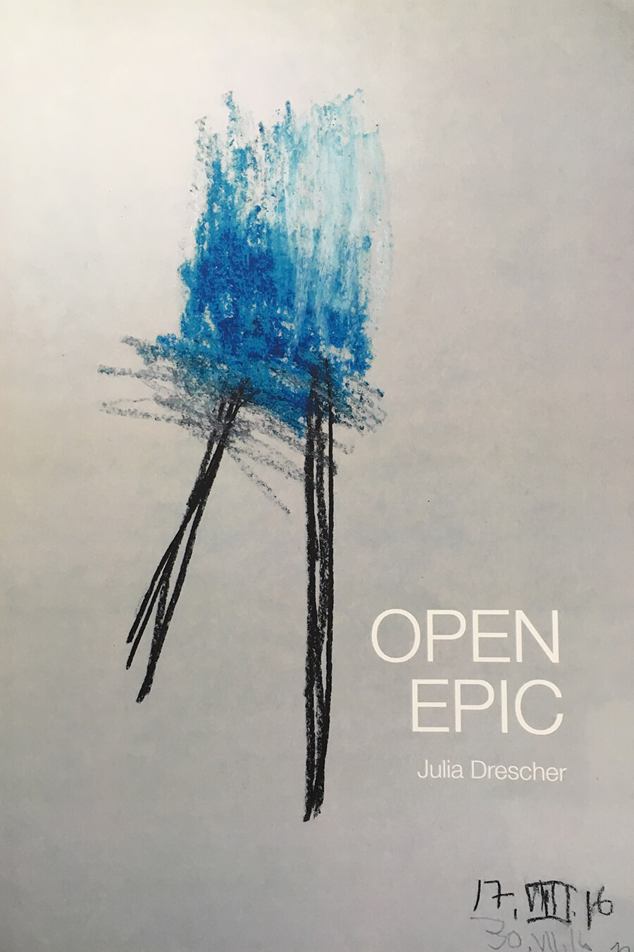 Open Epic by Julia Dresicher Cover