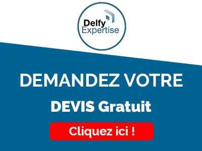 delfy-banner
