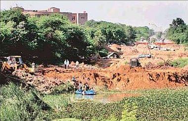 Blame Game of Agencies, victimising Delhi's Greens