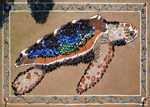 Art for the Sky: The Endangered Sea Turtle