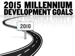 2015 MDG Target Year