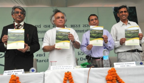 """Finish De-Greening Before Implementing Greening Projects"", Jairam"