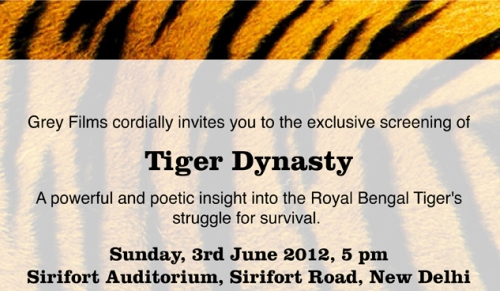 """Invitation to the Exclusive Screening of """"Tiger Dynasty"""""""