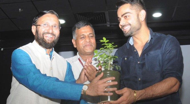 A Sapling for Virat Kohli, on World Environment Day 2015