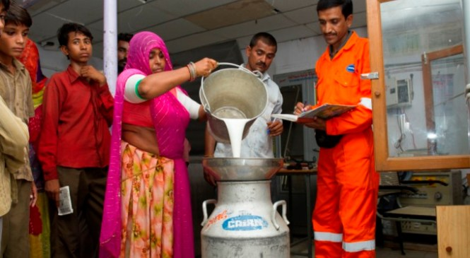 Cairn India Rededicates Itself on World Day to Combat Desertification