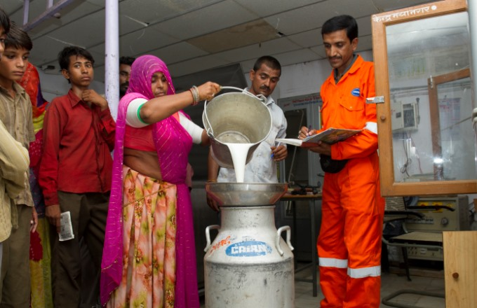 cairn-india-dairy-project