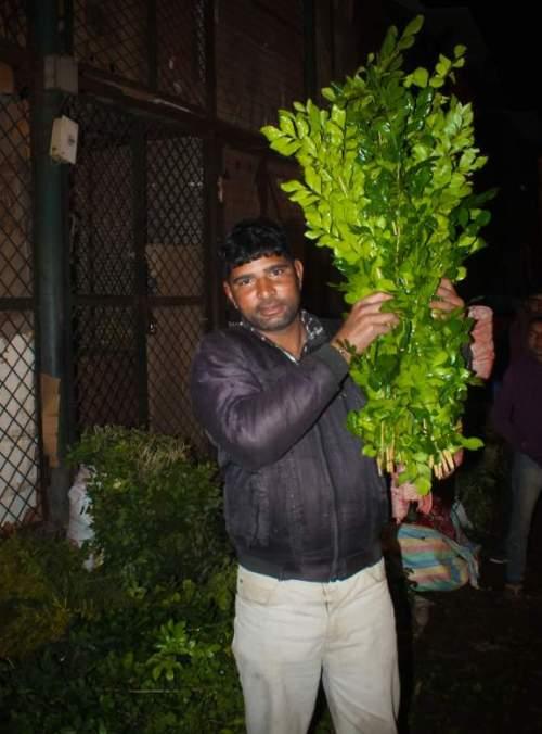 New Delhi photo tour of markets