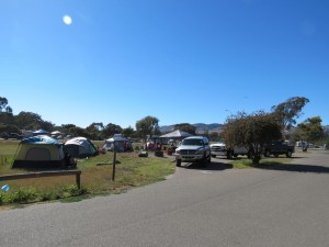 Pismo Beach campground